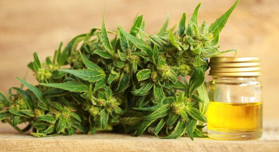 CBD: la sostanza terapeutica presente nella marijuana